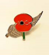 Poppy Pin with Fern 100 Years